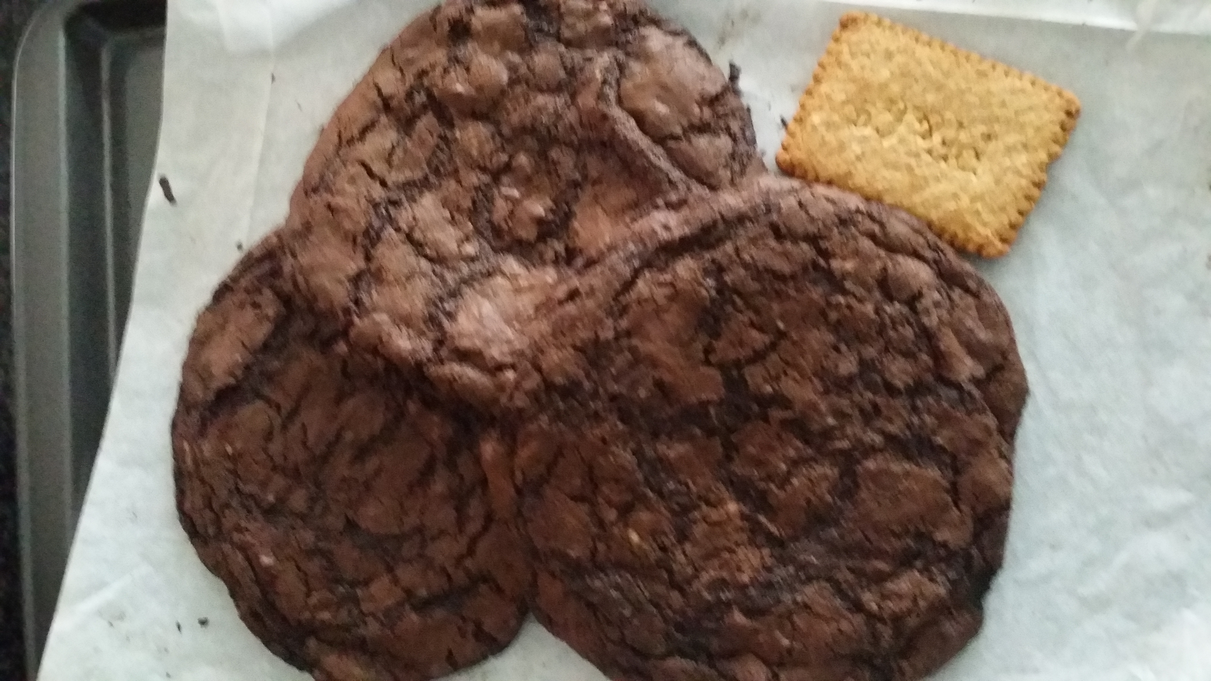 Large Size Chocolate Fudge Cookies for Favours