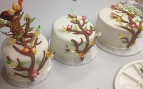 Tiered Bird Cake